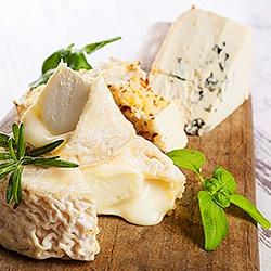 Servírovanie syra